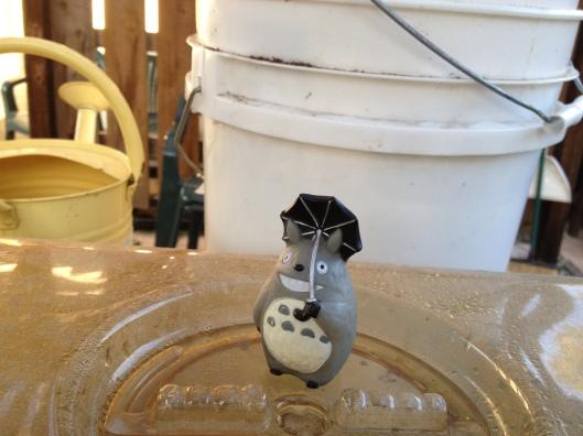 Totoro and Tomato Seeds